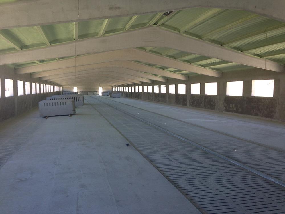 Interior esperando colocar corrales de Ojefer.