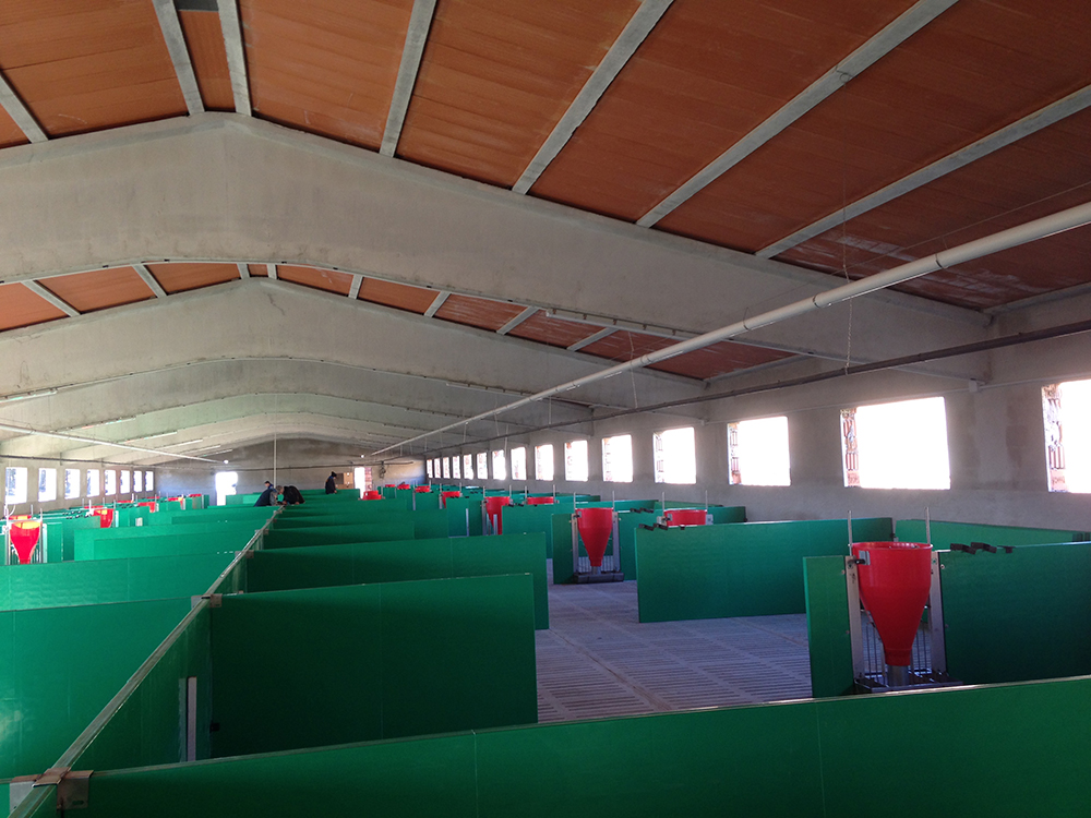Interior nau amb corral.